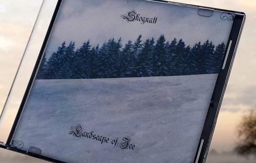 Skognatt - Landscape of Ice