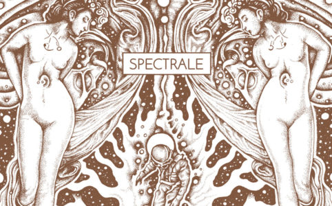 Spectrale Interview