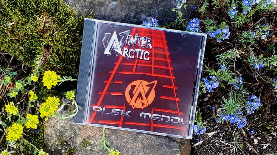 Arctic Winter - Plek Meddl
