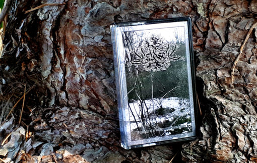 Waldseel - Visions of a Destructive Revelation